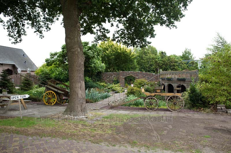 The Middle age Garden 2018