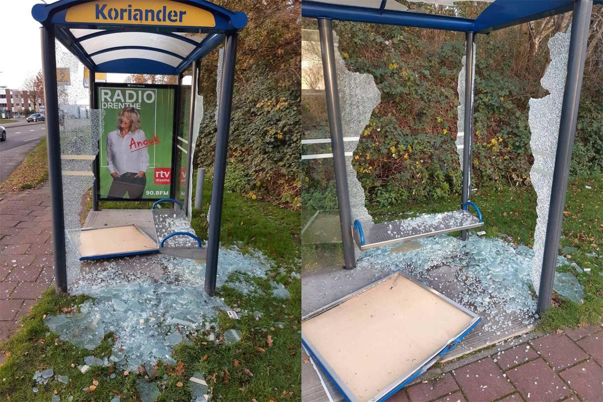 bushalte-Koriander