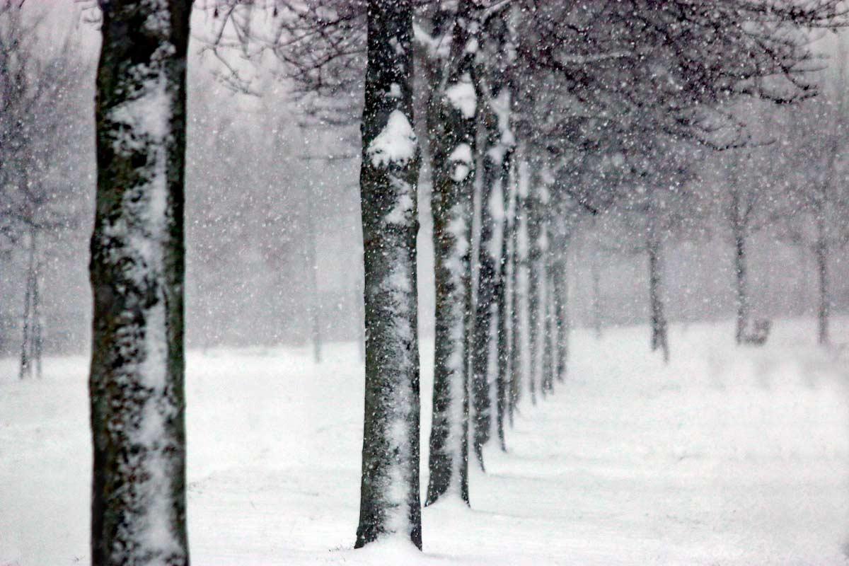 sneeuwstorm_9132web